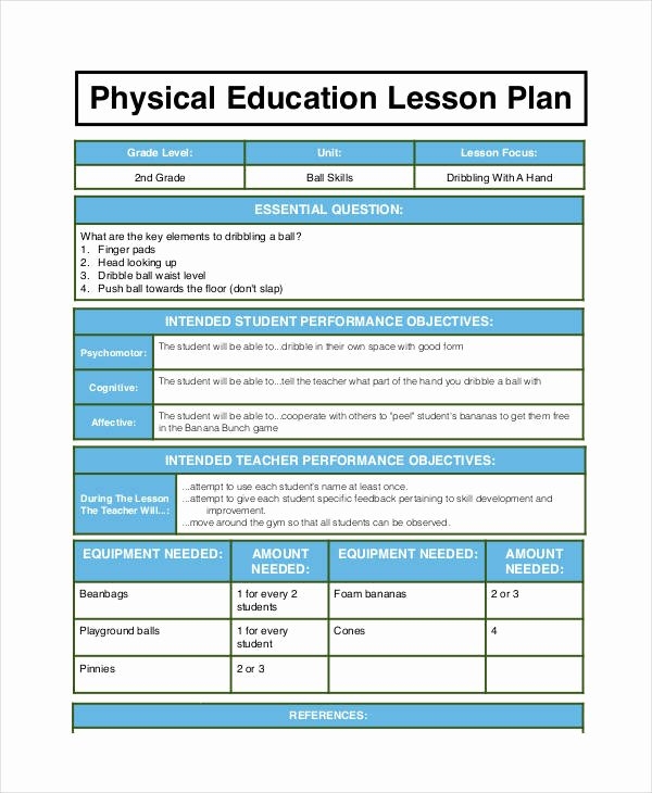 Physical Education Lesson Plans Template Best Of Free 62 Lesson Plan Examples & Samples In Google Docs