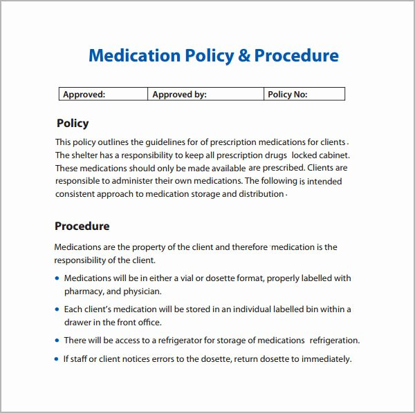 Policy and Procedure Templates Best Of 6 Policy and Procedure Templates Pdf Doc