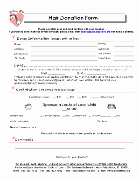 Printable Donation form Template Beautiful 36 Free Donation form Templates In Word Excel Pdf
