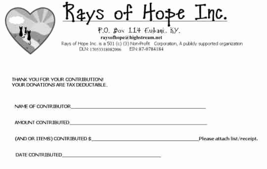 Printable Donation form Template Lovely 36 Free Donation form Templates In Word Excel Pdf