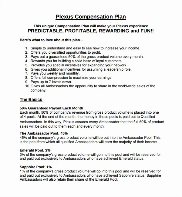 Professional Compensation Plan Template Beautiful Sample Pensation Plan Template 12 Free Documents In