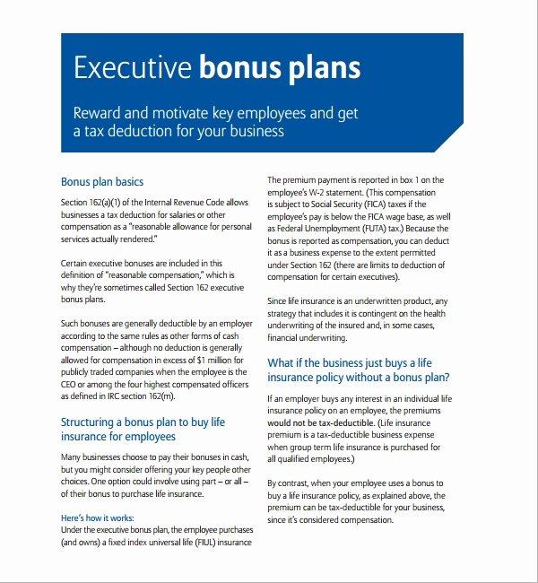 Professional Compensation Plan Template Fresh Sample Bonus Plan Template 7 Free Documents In Pdf