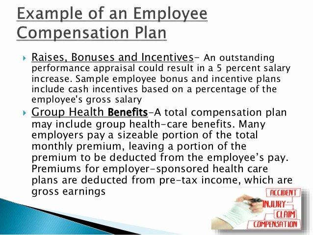 Professional Compensation Plan Template Inspirational Pensation Management & It's Objectives
