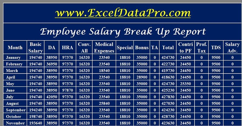Professional Compensation Plan Template Luxury Download Salary Breakup Report Excel Template Exceldatapro