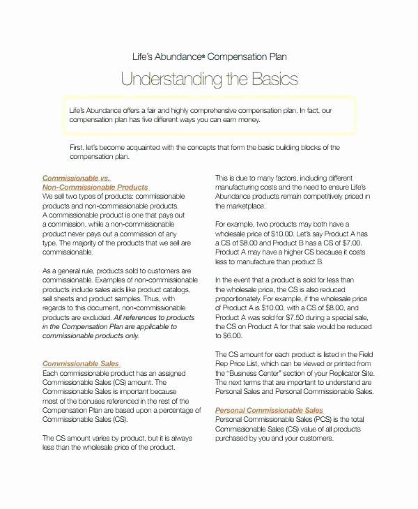 Professional Compensation Plan Template Unique Employee Incentive Plan Template Free Bonus Dental Sample