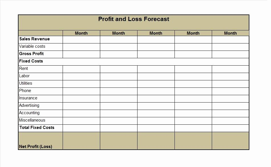 Profit and Loss Template Pdf Best Of 35 Profit and Loss Statement Templates & forms