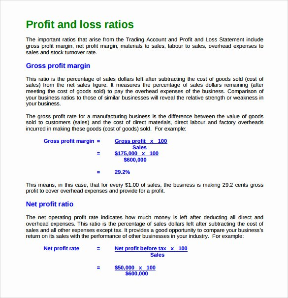 Profit and Loss Template Word Elegant Free 21 Sample Profit and Loss Templates In Google Docs