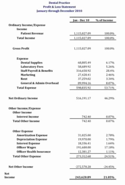 Profit and Loss Template Word Luxury 21 Free Profit and Loss Statement Template Word Excel