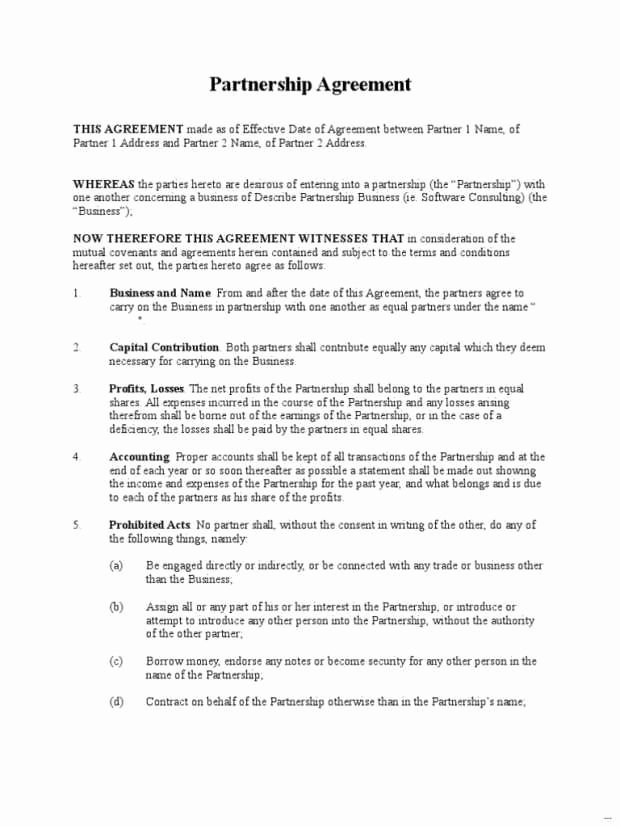 Profit Sharing Agreement Template Unique Profit Agreement Template Free Expert Sample Profit