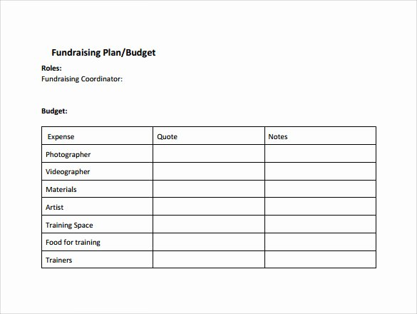 Project Action Plan Template Awesome Sample Plan Of Action Template 12 Free Documents In Pdf