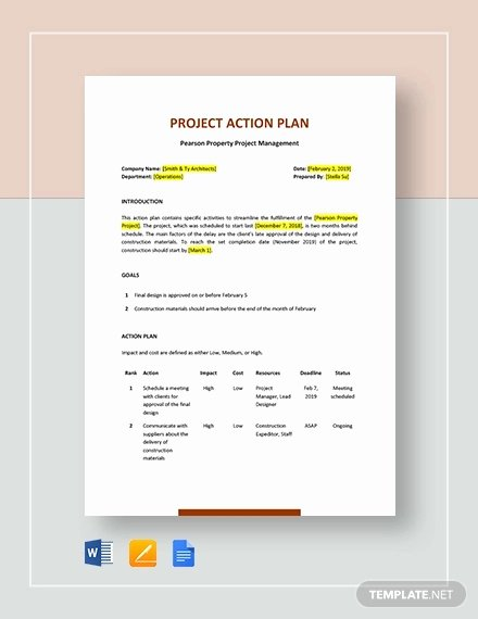 Project Action Plan Template Best Of 11 Project Action Plan Examples Docs Pdf
