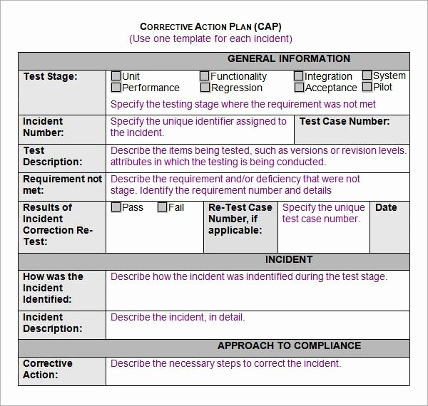 Project Action Plan Template Best Of Sample Action Plan Template 9 Free Documents In Pdf