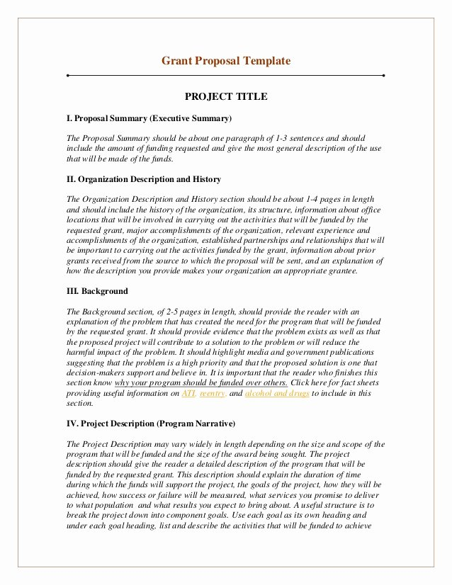 Project Executive Summary Template Inspirational Grant Proposal Template