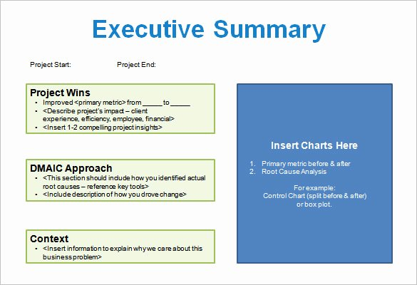 Project Executive Summary Template Inspirational Project Storyboard Template – 5 Free Word Excel Pdf