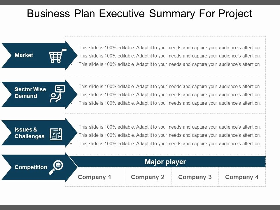 Project Executive Summary Template Lovely Business Plan Executive Summary for Project Example Ppt