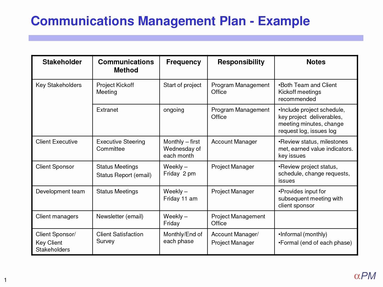 Project Management Plan Template Inspirational 12 Crisis Management Plan Examples Pdf Google Docs
