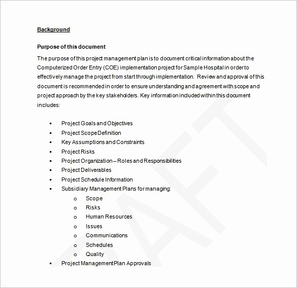 Project Management Plan Template Luxury Project Management Plan Template 12 Free Word Pdf