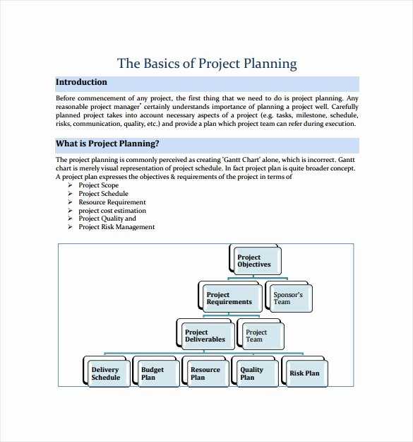 Project Plan Template Word New Project Plan Template 20 Download Free Documents In Pdf