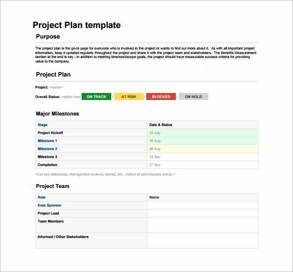 Project Plan Template Word Unique Project Plan Template Word