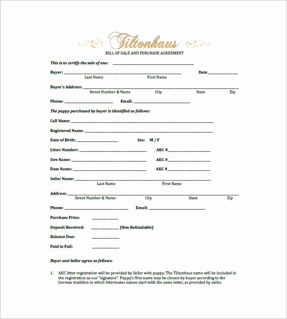 Puppy Sale Contract Template Fresh Dog Bill Of Sale – 8 Free Sample Example format