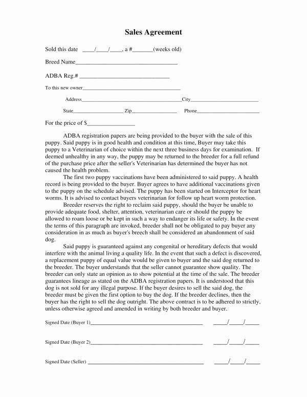 Puppy Sale Contract Template Fresh Free 11 Puppy Sales Contract Template In Pdf