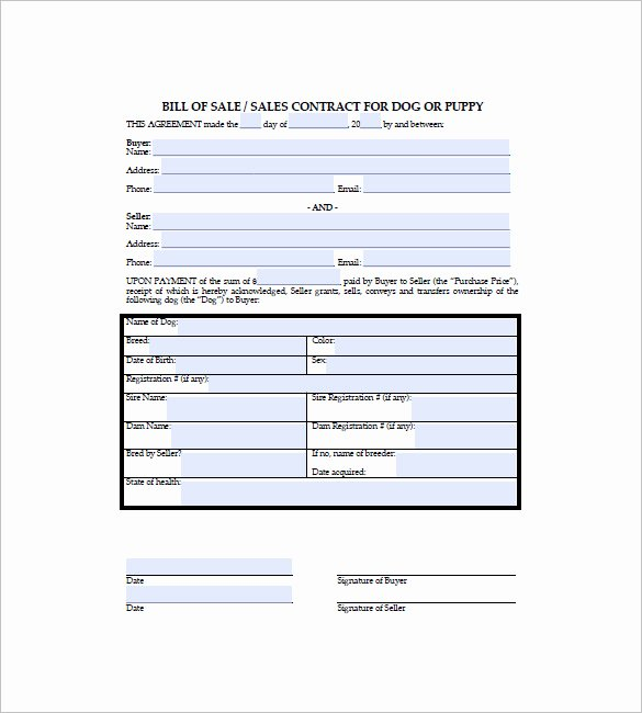 Puppy Sale Contract Template Lovely Dog Bill Of Sale – 8 Free Sample Example format