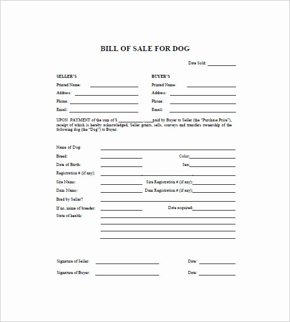 Puppy Sale Contract Template Lovely Dog Bill Of Sale Template – 13 Free Word Excel Pdf