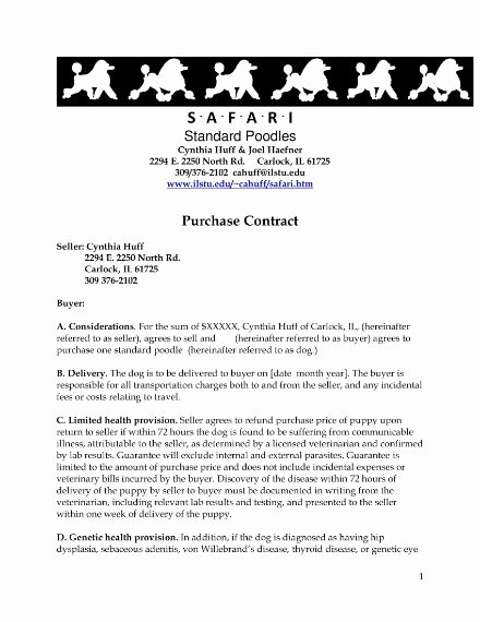 Puppy Sales Contract Template Beautiful 8 Puppy Sales Contract Templates Word Google Docs