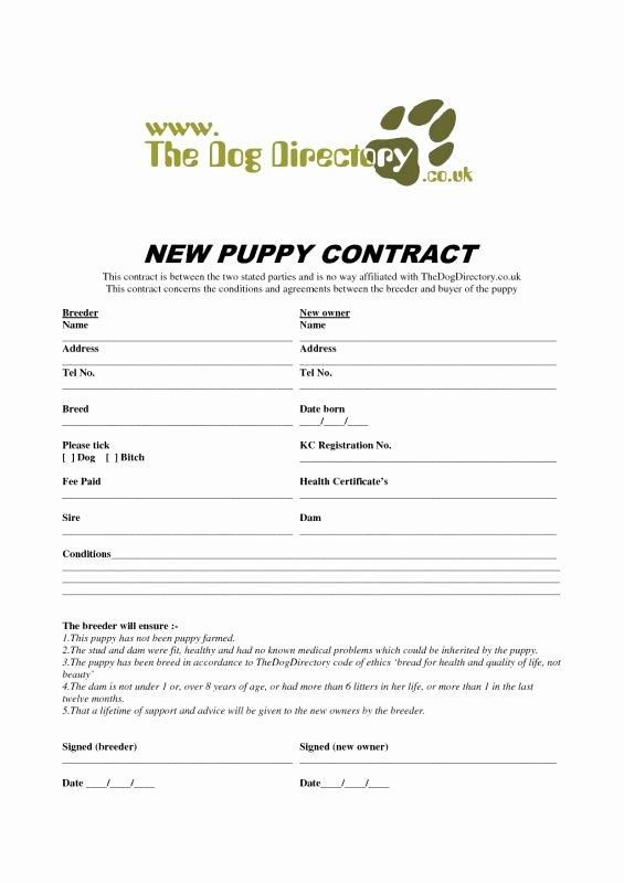 Puppy Sales Contract Template Beautiful Puppy Application Template – Exploredogs