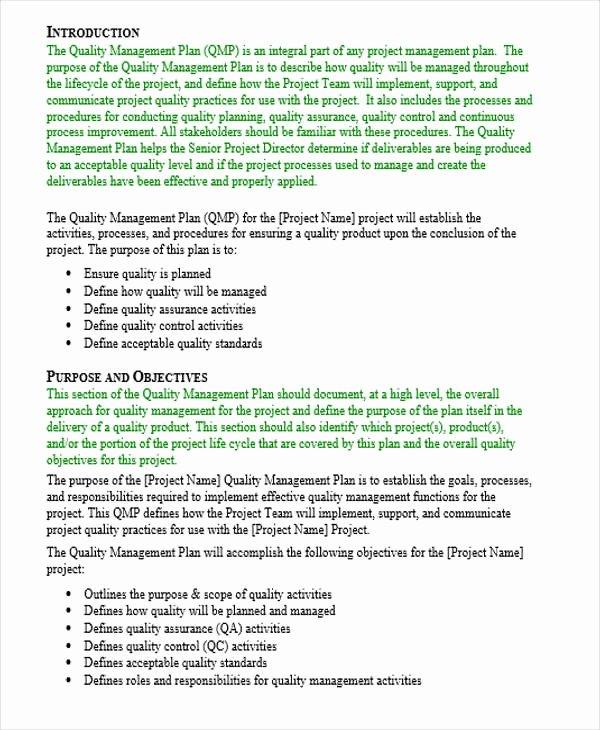 Quality Management Plan Templates Fresh 45 Management Plan Examples Pdf Word