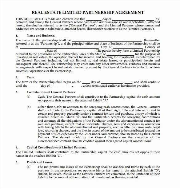 real estate partnership agreement