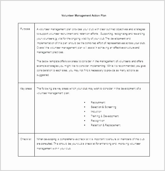 Recruitment Action Plan Template Best Of 14 Action Plan Guide Iueay