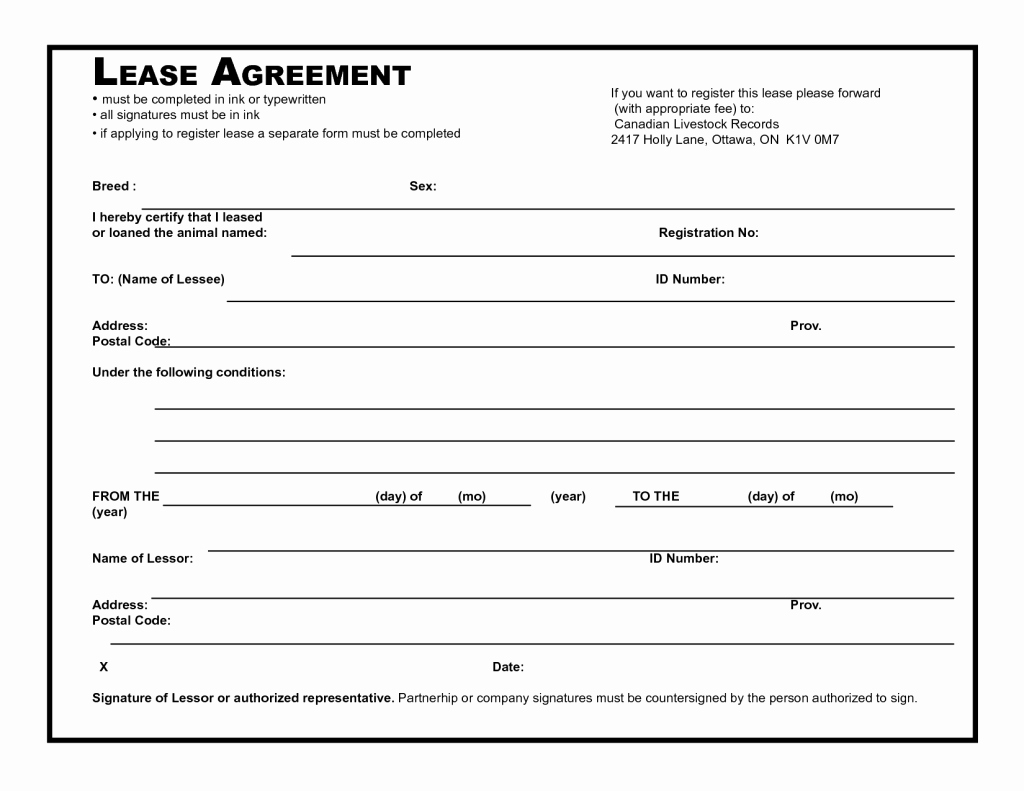 Rent to Own Contract Template Unique Efficient Template Example Of Blank Lease Agreement with