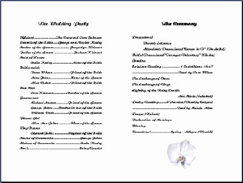 Retirement Ceremony Program Templates Elegant Army Retirement Ceremony Program Samples Templates