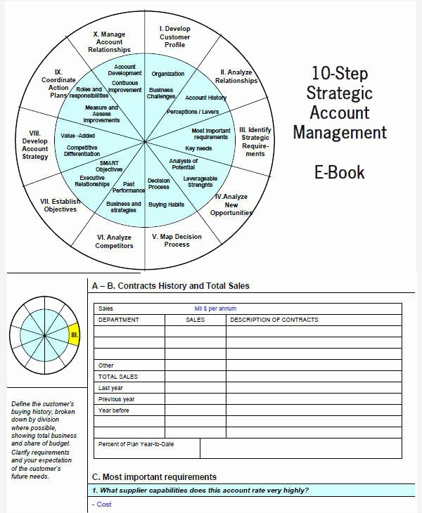Sales Account Plan Template Lovely 31 Sales Plan Samples & Templates In Pdf Word Docs