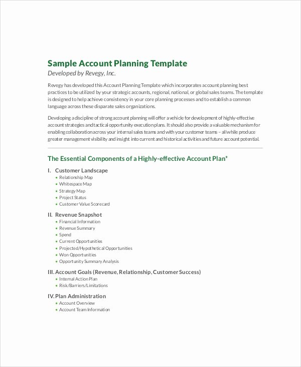 Sales Account Plan Template Lovely 9 Account Plan Templates Sample Example Word Google