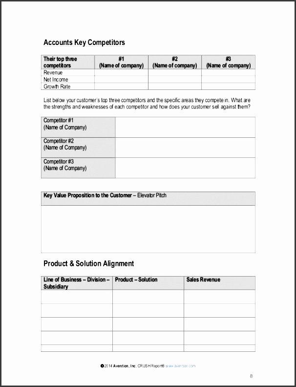 pany sales plan template