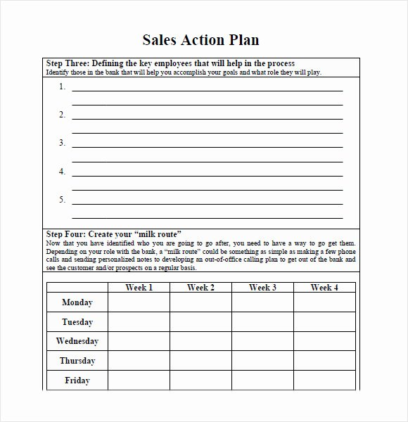 Sales Action Plan Template Best Of Sales Plan Template
