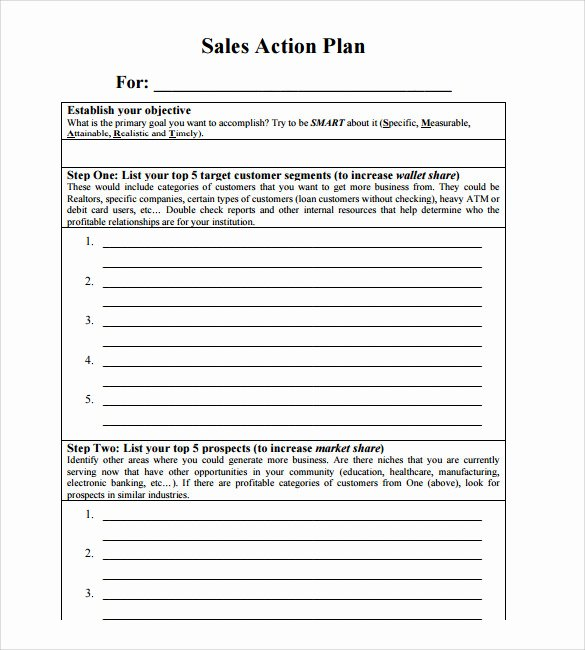 Sales Action Plan Template Best Of Sample Sales Action Plan 12 Example format