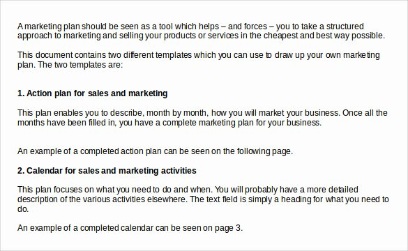 Sales Action Plan Template Lovely Sample Sales Action Plan 12 Example format