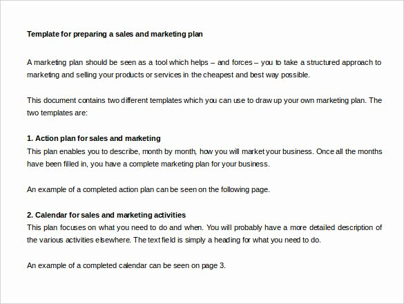 Sales Action Plan Template Unique Sales Action Plan Template – 11 Free Word Excel Pdf