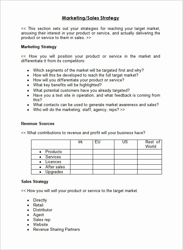 Sales Plan Template Word Best Of Sample Sales Plan Template 17 Free Documents In Pdf