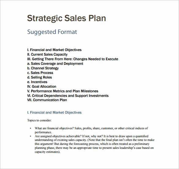 Sales Plan Template Word Unique 27 Sales Plan Template Pdf Docs Word
