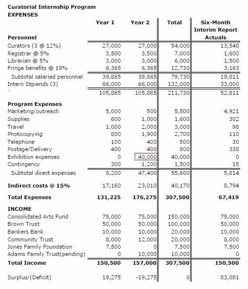 Sample Nonprofit Budget Template Lovely Tips for Successful Grant Writing