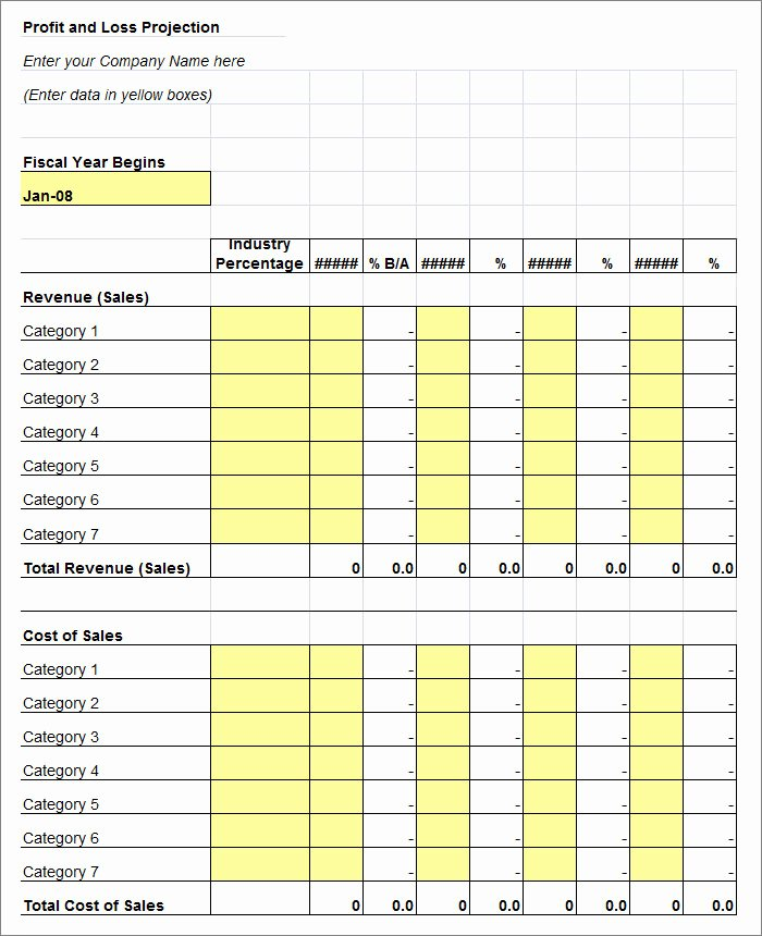 Sample Profit and Loss Template Awesome 11 Profit and Loss Statements Word Pdf Google Docs