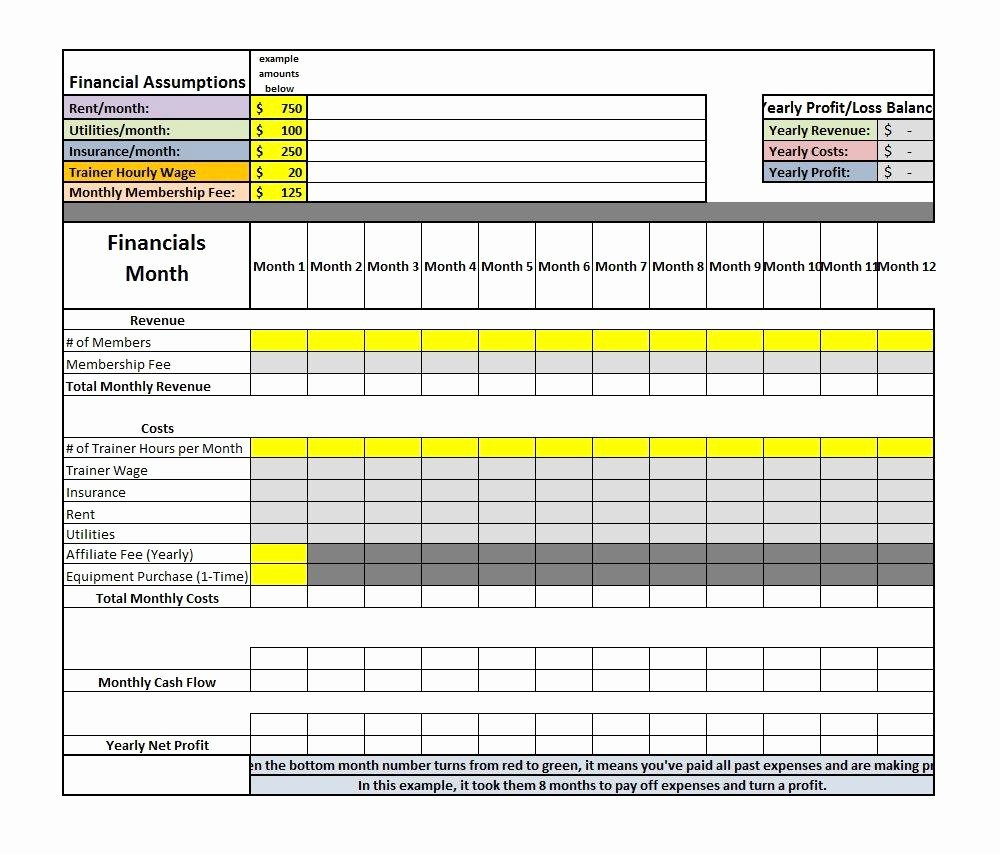 Sample Profit and Loss Template Elegant assumptions for Profit and Loss Spreadsheet