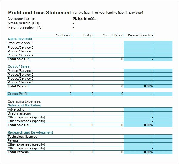 Sample Profit and Loss Template Fresh Free 21 Sample Profit and Loss Templates In Google Docs