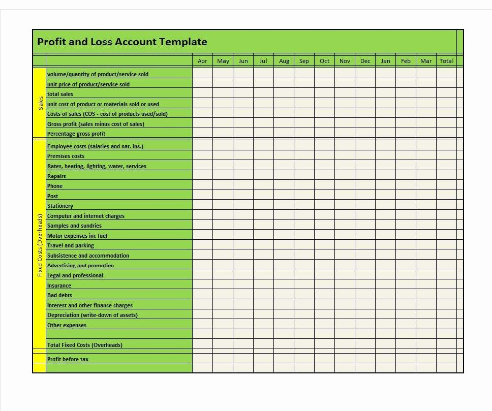 Sample Profit and Loss Template New 35 Profit and Loss Statement Templates & forms