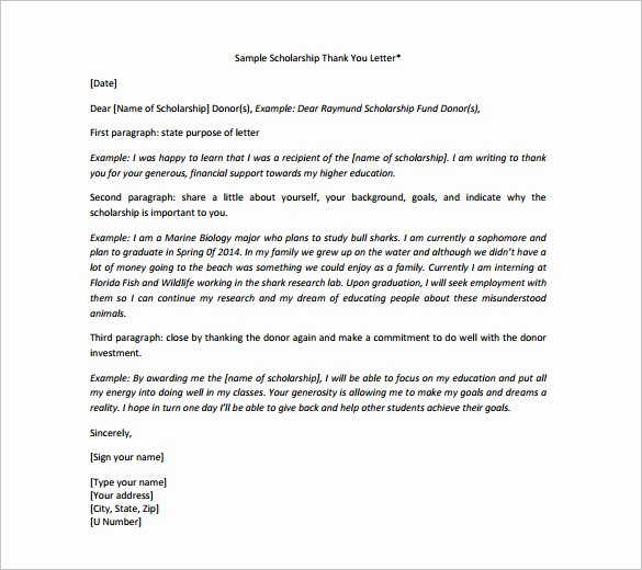 Scholarship Thank You Letter Template Lovely Scholarship Thank You Letter – 8 Free Word Excel Pdf