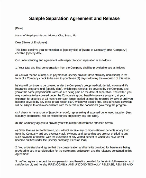 Separation Agreement Template Word Beautiful Sample Business Separation Agreement Template 9 Free